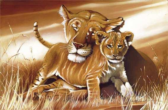 http://www.kiss-textil.de/1-00762-Lioness.jpg