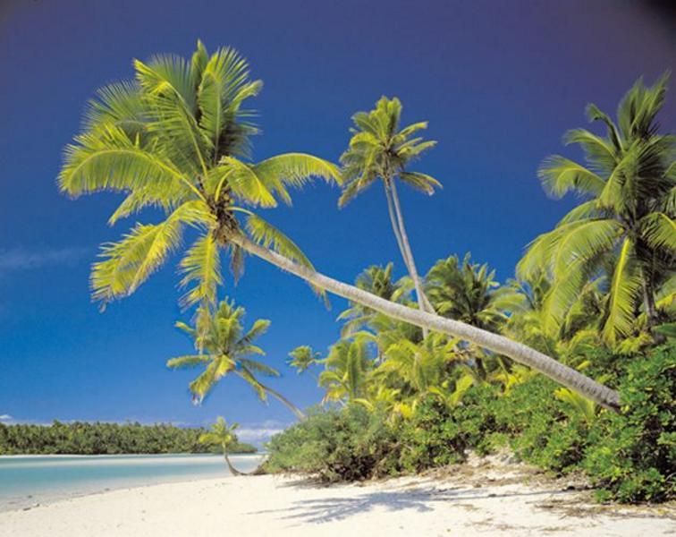 Mauritius, weisser Strand, grüne Oase - bei Klick zurück zur Motivübersicht