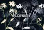 grafisches Blumenmuster, hell auf dunkel als Fototapete