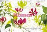 grafische Blumen auf gekalkter Wand, Hip