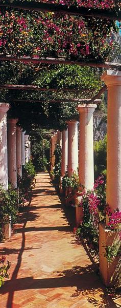 Blumenweg - bei Klick zurück zur Motivübersicht