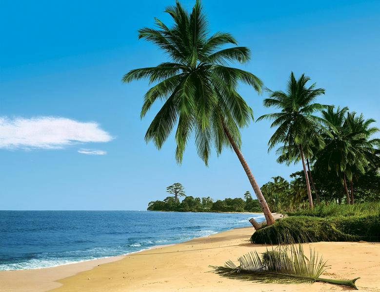 fototapete bahamas trauminsel in der karibik kiss gmbh fototapeten f r den individuellen. Black Bedroom Furniture Sets. Home Design Ideas