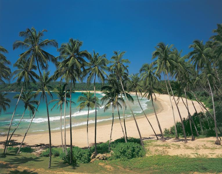 Tropical Bay, grüne Oase - bei Klick zurück zur Motivübersicht