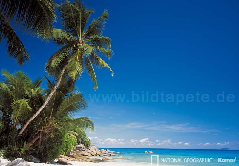 ESCAPE - Traumstrand Anse Soleil auf Mahe - bei Klick zurück zur Motivübersicht
