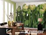 TULIPS, weiße Tulpen im Wohn- und Arbeitsbereich - bei Klick vergrößerte Darstellung
