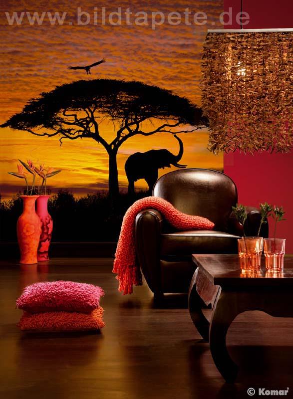 AFRICAN SUNSET - wilde Silhouetten vor leuchtendem Himmel Afrikas - bei Klick zurück zum Motiv AFRICAN SUNSET