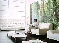 Tropenwald im Wohnbereich - bei Klick vergrößerte Darstellung