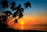 Tropeninsel im Sonnenuntergang - bei Klick Artikelbeschreibung