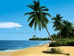 Fototapete Bahamas - bei Klick Artikelbeschreibung