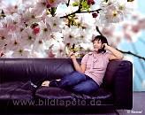 SPRING - Kirschblüte im Wohnbereich - bei Klick vergrößerte Darstellung