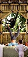 TREEHOUSE, Schimpanse vor dem Fenster im Wohnbereich - bei Klick vergrößerte Darstellung