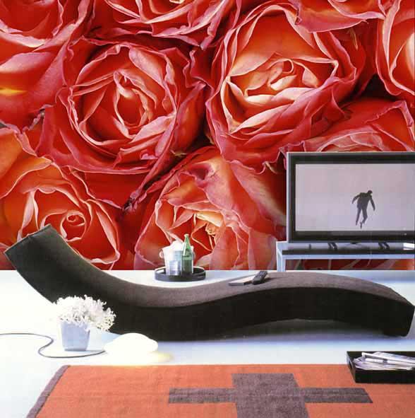 pin fototapete 1 wallpaper background on pinterest. Black Bedroom Furniture Sets. Home Design Ideas